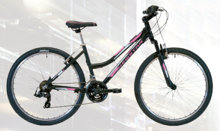 Newstar BTT Everest 26""